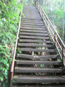 The stairs leading to the waterfall viewpoint.