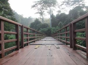 Empty bridges just feel so artsy...